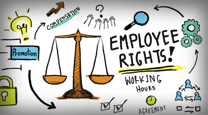 Working in The Netherlands - The Impact of Changes to Dutch Labour Law